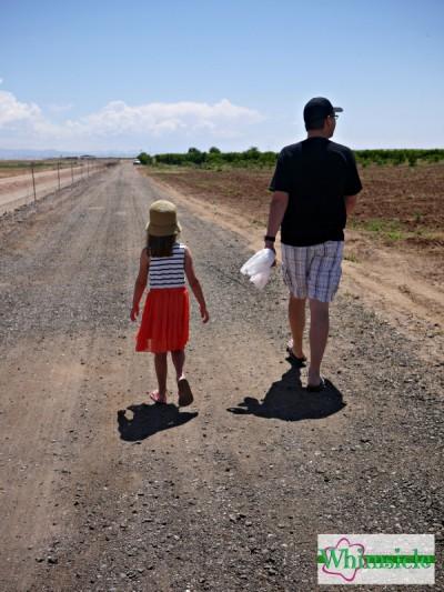 dad-daughter-walking