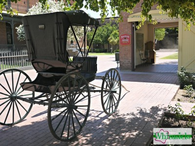 rosson-house-buggy