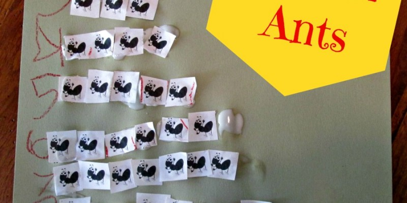 Trail of Ants: Number Correspondence