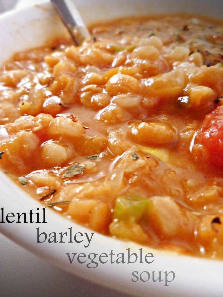 tea-veggie-lentil-barley-soup-091