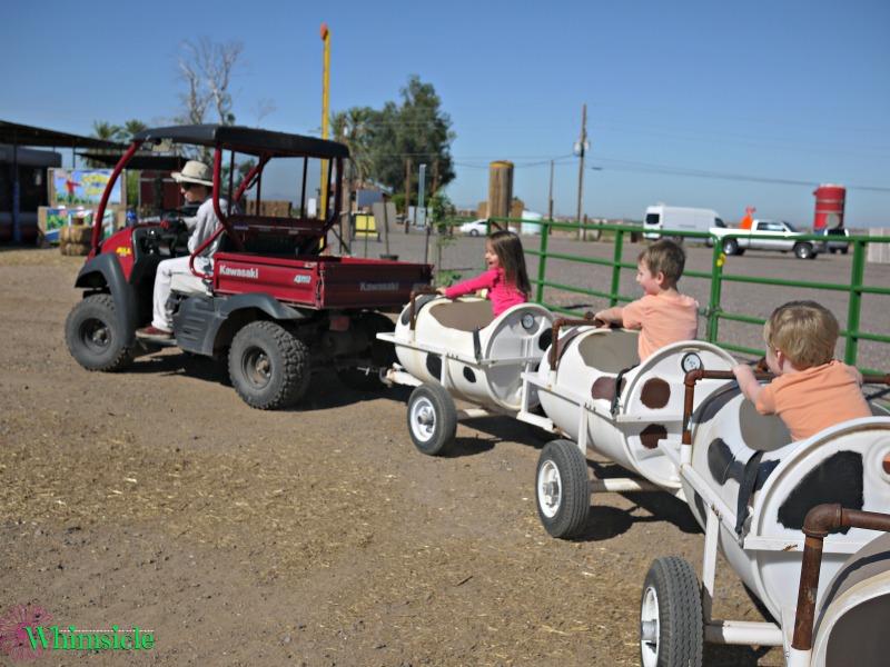 kids-cow-train