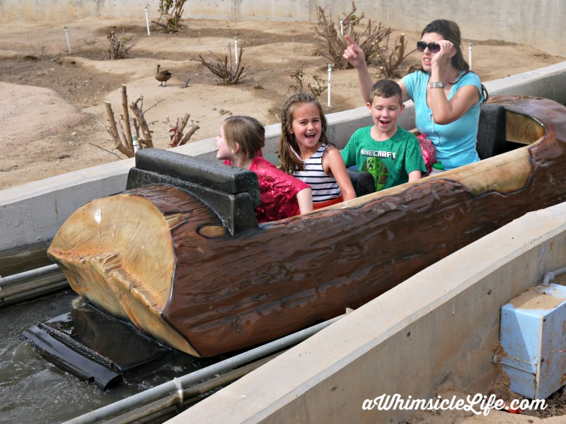 after-log-ride-wildlife-world-zoo