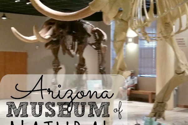 Dinosaurs, panning for gold and a real prison! The Arizona Museum of Natural History in Mesa was so much fun. This post gives you tips on what to expect, how to prepare and what to do about food.