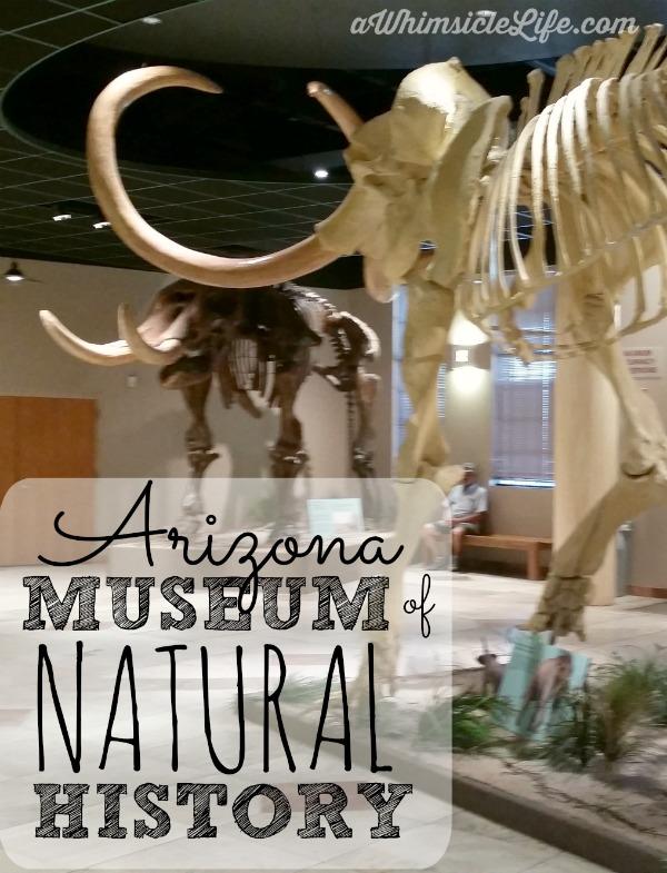 Museum Of Natural History Mesa Free