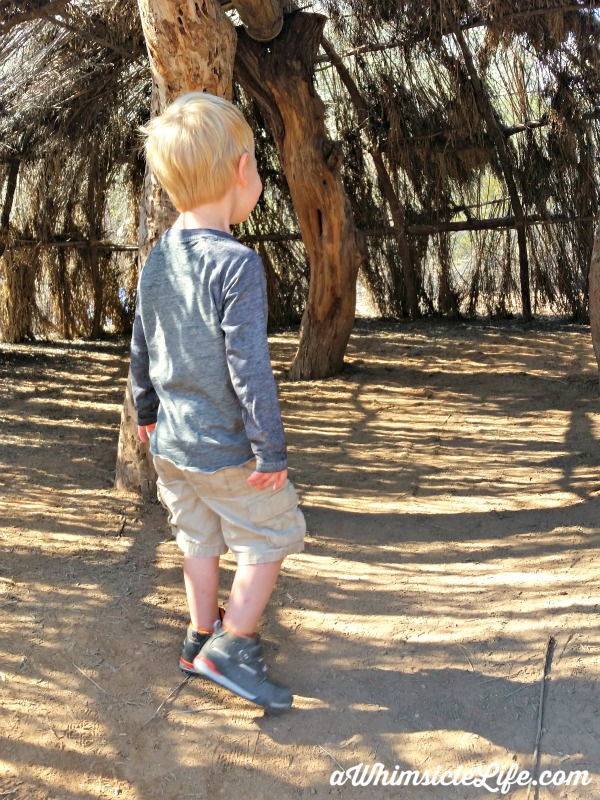 Kid-Activity-Desert-Botanical-Garden