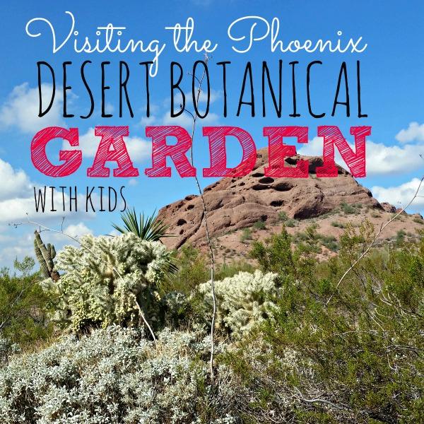 Desert Botanical Garden Family Activities In Phoenix