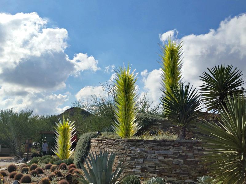chihuly-sculptures-Desert-Botanical-Garden