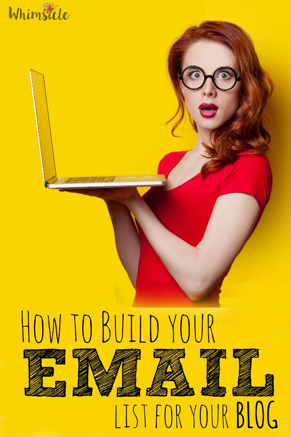 Wondering how all the big blog get thousands of email followers? This explains how to start out.
