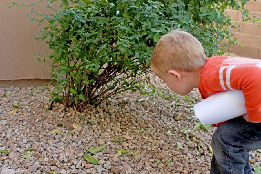 kid activity preschooler